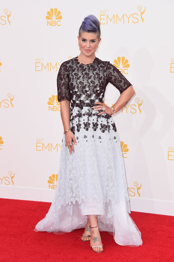 BEST AND WORST OF 2014 EMMY AWARDS RED CARPET