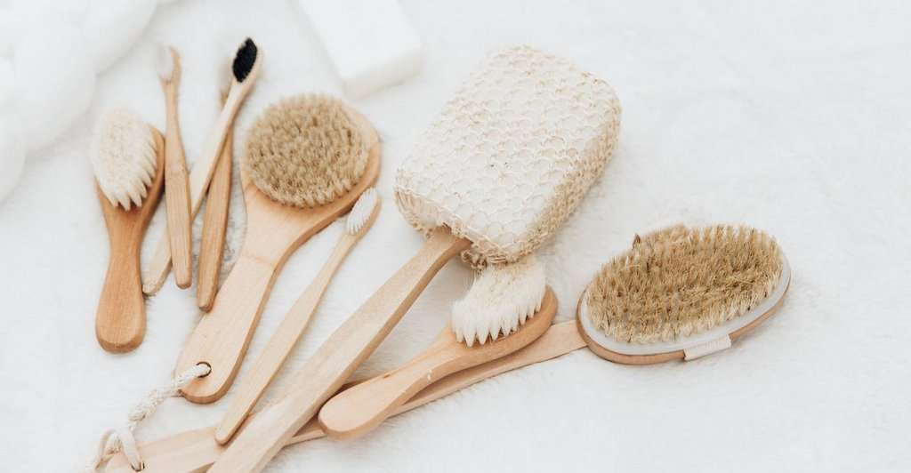 DRY BRUSHING IN WINTER