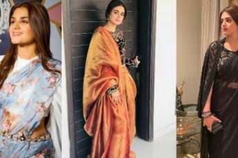 Hira Mani and her saree looks